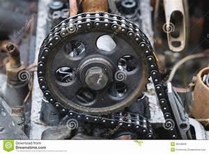 Voiture Avec Chaine De Distribution Diesel : chaine de distribution bmw prix prix changement chaine distribution bmw 118d voitures ~ Medecine-chirurgie-esthetiques.com Avis de Voitures