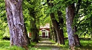 Ferienhaus Am Wasser Deutschland : ferienh user in schweden d nemark norwegen und deutschland ~ Watch28wear.com Haus und Dekorationen