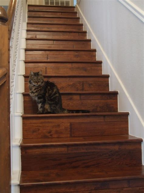 engineered wood stairs wooden stairs traditional staircase dallas by town center floors