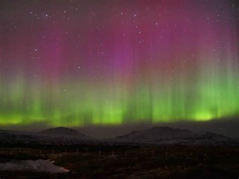 Northern Lights In Iceland Picture Of Reykjavik