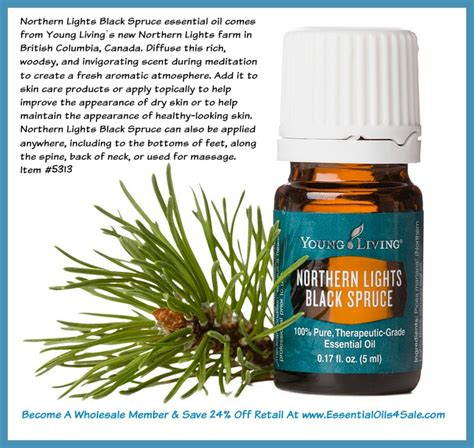 northern lights black spruce essential oil price reduced now is the time to get northern lights