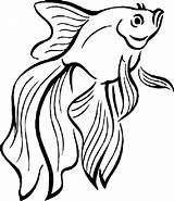 Fish Coloring Peixe Betta Colorir Peces Dibujos Colorear Imprimir Desenhos Pintar Pez Educative Colouring Fische Desenho Tropical Poisson Animales Coloriage sketch template