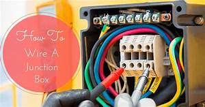 How To Wire A Junction Box  Things You Need To Know