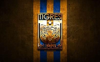 Tigres Uanl Fc Football Liga Mx Orange
