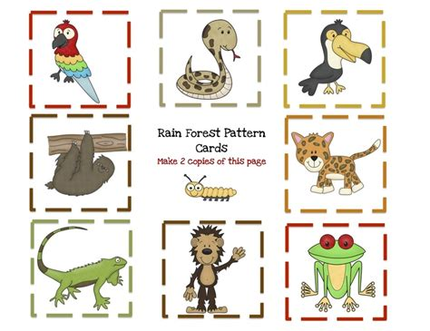 preschool rainforest lesson plans 233 best images about forest on forests 195