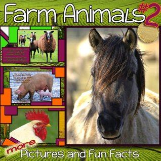 childrens book farm animals cute pictures  fun