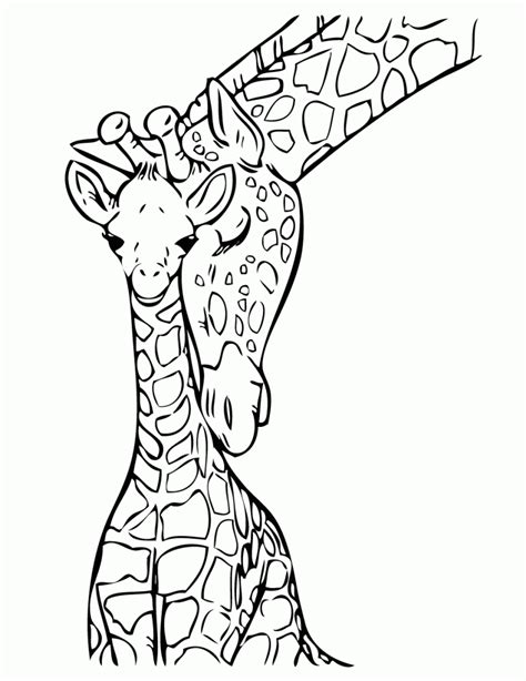 baby giraffe coloring book pages giraffes  coloring