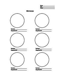 microscope worksheet science pinterest worksheets