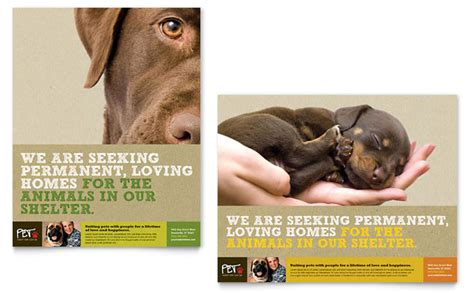 Charity Action For Animal Shelter Poster Templates by Animal Shelter Pet Adoption Poster Template Design