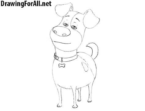draw max   secret life  pets