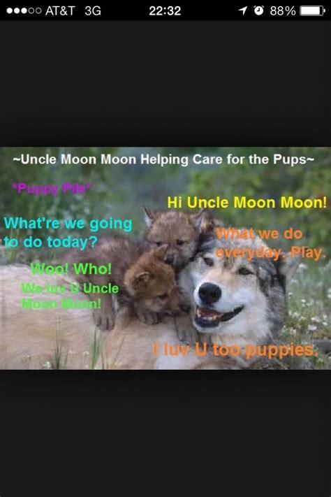 Moon Moon Meme - moon moon puppy sits moon moon pinterest