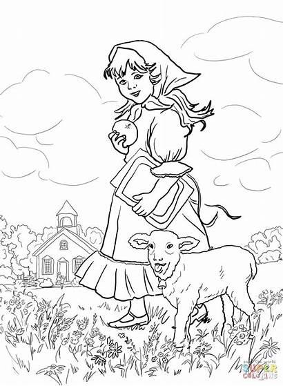 Coloring Lamb Mary Had Nursery Pages Sheep