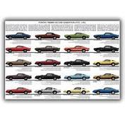 Pontiac Firebird Second Generation Model Chart Poster