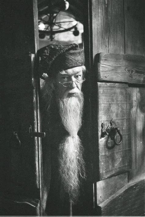 albus dumbledore harry potter  harry potter harry