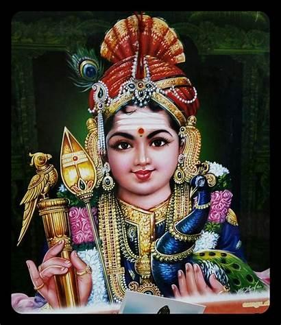 Murugan Lord God Om Shiva Wallpapers Krishna