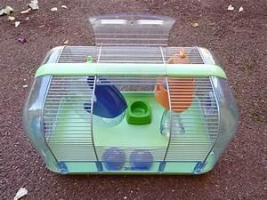 Cage A Cochon D Inde : a vendre cage pour cochon d 39 inde et cage pour souris hamster ~ Dallasstarsshop.com Idées de Décoration