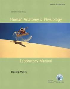 Marieb  U0026 Kollett  Human Anatomy  U0026 Physiology Laboratory