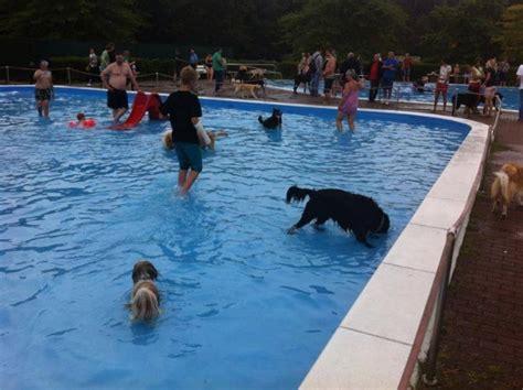 Schwimmbecken Für Hunde