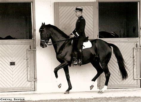 cadre noir de saumur 1000 images about dressage on