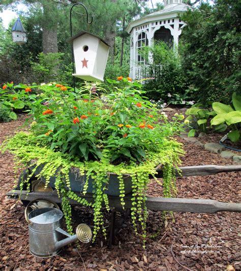 wheelbarrow planter ideas hometalk my wheelbarrow planter