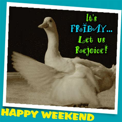 A Funny Weekend Ecard For You. Free Enjoy the Weekend ...