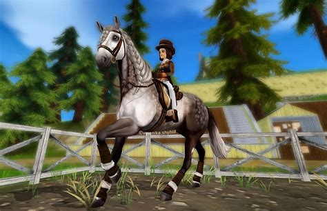 horse andalusian lusitano breeds breed horses africa