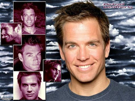Male Celeb Fakes Best The Michael Weatherly