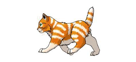 create  walking kitten animation  adobe photoshop