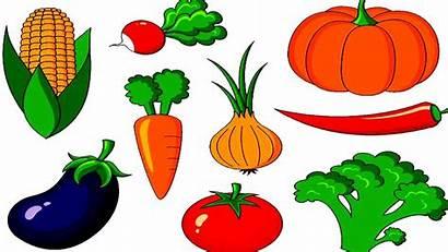 Vegetables Vegetable Clipart Names Drawing Fruits Children