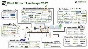 Ag Biotech Market Map: 245 Startups Using Biology ...