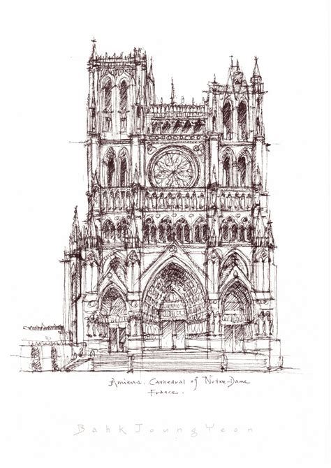 cathedral notre dame  amiens france sketch