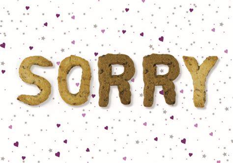 bilderrahmen zum befüllen die besten 25 es tut mir leid geschenke ideen auf sorry geschenke entschuldigungs