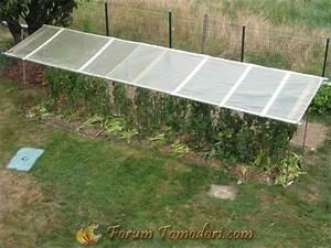 Abri A Tomate : protection tomates les mat riels les ~ Premium-room.com Idées de Décoration