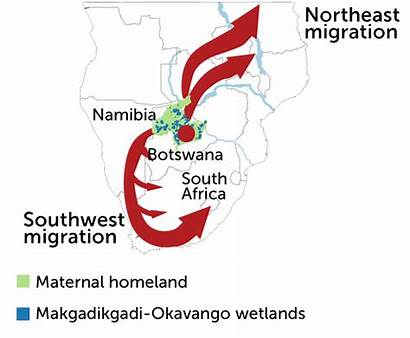 Africa Southern Sapiens Homo Map Migration Science