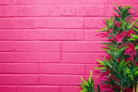 the color fuschia what color is fuchsia symbolism and usage in design