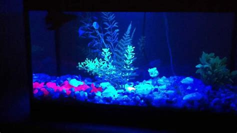 blue led aquarium light blue light aquarium l led azul p aqu 225