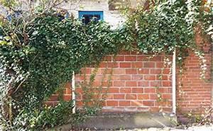 Wer Zahlt Zaun Zwischen Zwei Grundstücken : wem geh rt die trennende grundst cksmauer ~ Whattoseeinmadrid.com Haus und Dekorationen