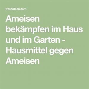 Ameisen Entfernen Garten : 25 best ideas about ameisen im haus on pinterest ~ Lizthompson.info Haus und Dekorationen