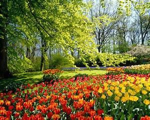 È primavera… Pensieri e Perline