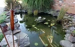 Koi Pond water Garden Design – Home Design Examples
