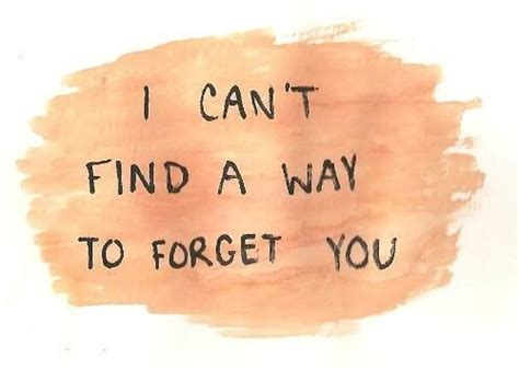 le love   find    forget