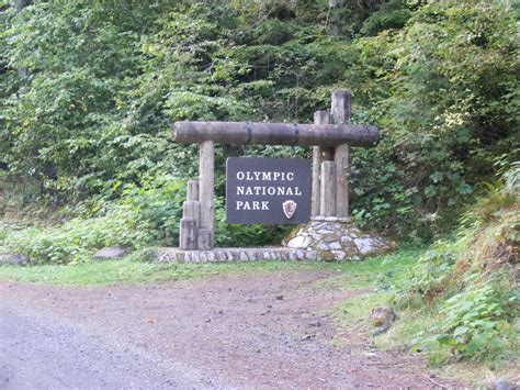 Staircase Campground Area And Trails Olympic National Park. Club Pep Signs. Closure Signs Of Stroke. Ear Signs. Star Princess Signs Of Stroke. Giraffe Signs Of Stroke. Chinese Signs. Sea Signs. Lighted Signs