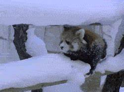 Winter is annoying... - The Meta Picture