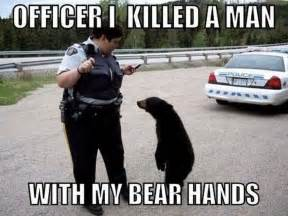 Funny Animal Memes Pictures - amazing creatures 30 funny animal captions part 12 30 pics