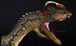 Dilophosaurus Bust by Damtoys | Sideshow Collectibles  Dilophosaurus