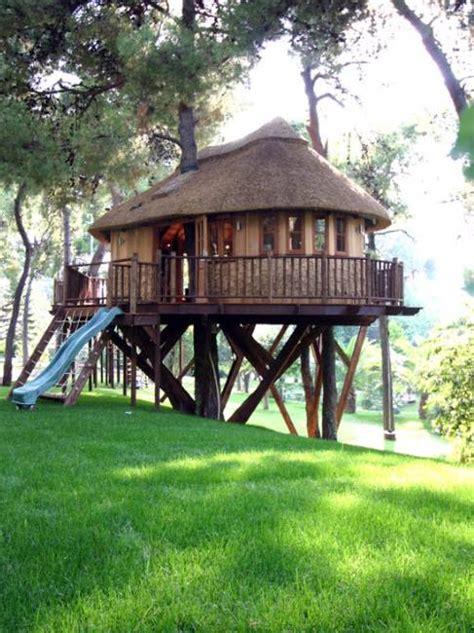 Backyard Tree House Design for Kids