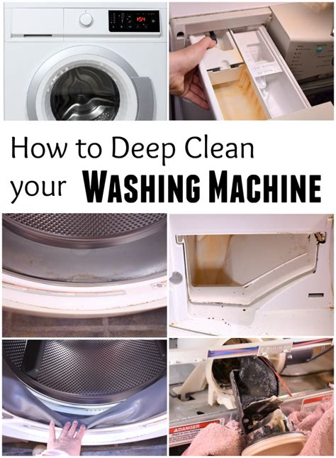 How To Clean Mold And How To Clean How To Get Rid Of Washer Stink Front Loader Mold