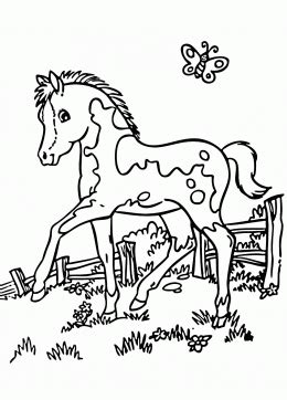 realistic pony coloring page  kids  girls coloring