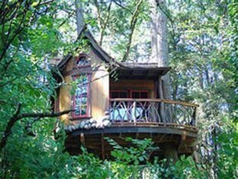 1000+ Ideas About Tree House Interior On Pinterest Tree