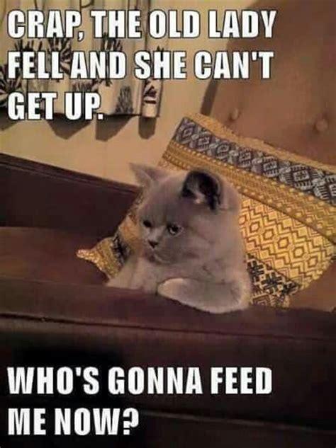 Life Alert Lady Meme - 25 best ideas about life alert on pinterest life alert meme grumpy cat and grumpy cat humor